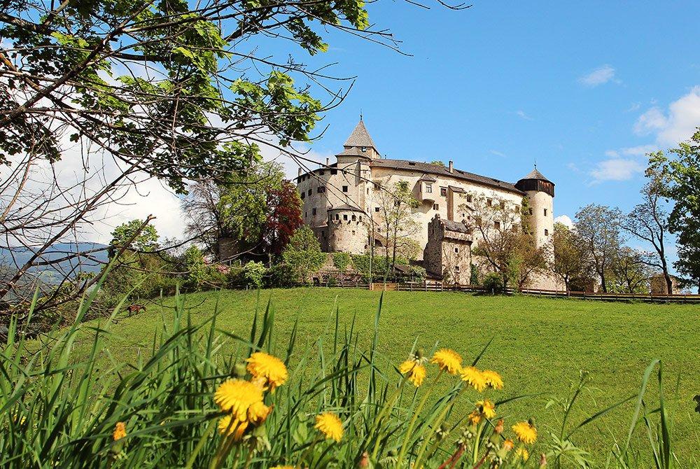 Zu den Burgen Hauenstein und Salegg